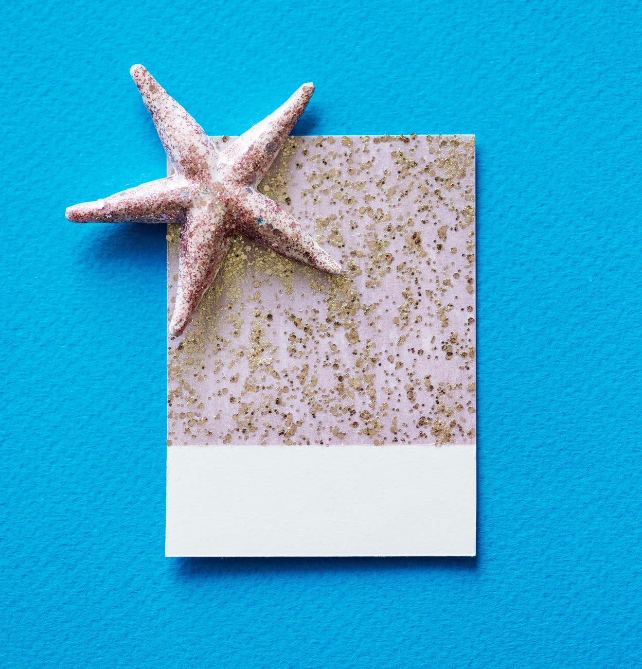 gray starfish and white and gray paper on blue surface